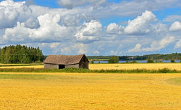 Rural landscape with field and barn. Aland Islands, Finland Stock Image