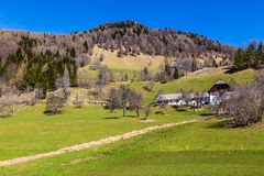 Rural Landscape With Field,Forest And Barn Stock Images