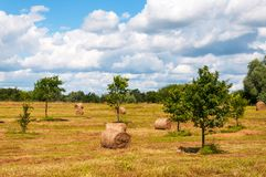 Rural landscape of field of haystacks under cloudy sky. Royalty Free Stock Images