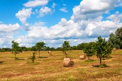 Rural landscape of field of haystacks under cloudy sky. Royalty Free Stock Photography