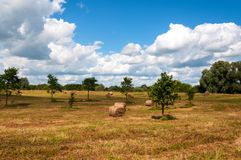 Rural landscape of field of haystacks under cloudy sky. Stock Images