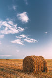 Rural Landscape Field Meadow With Hay Bales After Harvest In Sunny Evening At Sunset Stock Photo