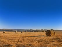 Rural landscape field meadow with hay bales after harvest in sunny evening at sunset or sunrise in late summer. Stock Image