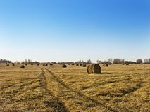 Rural landscape field meadow with hay bales after harvest in sunny evening at sunset or sunrise in late summer. Royalty Free Stock Photography