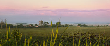 Rural landscape with field Royalty Free Stock Photo
