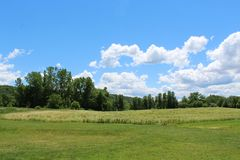 Rural landscape with fields and blue sky. Grassy field with line of trees. Bright blue sky with white clouds in Ithaca New York royalty free stock photo