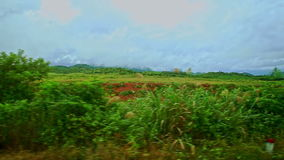 Rural Landscape Fields Grass Road Barriers against Cloudy Sky stock footage