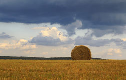 Rural landscape with fields and haystacks of straw Stock Photos