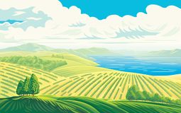 Rural landscape with fields and lake. Rural landscape with a beautiful view of distant fields and lake or sea. Vector illustration Stock Images