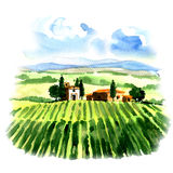 Rural landscape with fields vineyard and country house Stock Photo
