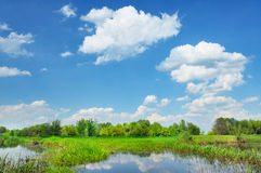 Rural landscape with flood waters of Narew river,  Royalty Free Stock Photography