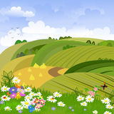 Rural landscape with flower meadow Stock Photo