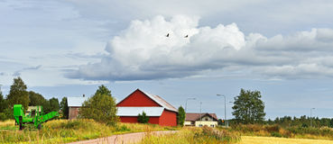 Rural landscape with flying cranes Royalty Free Stock Photography