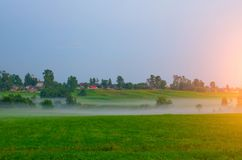 Rural landscape fog on a green field during sunset. Rural landscape fog on a green field during sunset Stock Photos