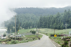 Rural landscape. Rural and foggy landscape. Road to El Cofre de Perote in Mexico Royalty Free Stock Photo