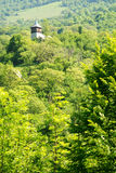 Rural landscape with forest and wooden church Royalty Free Stock Images