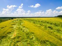 Rural landscape form above Stock Image