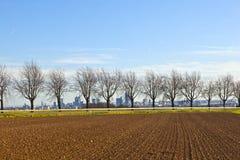 Rural landscape in front of Frankfurt am Main skyline Royalty Free Stock Photo