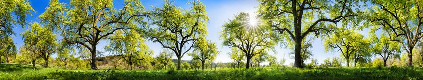 Rural landscape on a glorious sunny spring day stock image