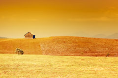 Rural landscape with golden sky and grass stock photo