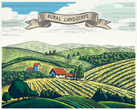 Rural landscape in graphical style. Rural landscape in graphical style, imitating the engraving. Hand drawn and converted to vector Illustration royalty free illustration