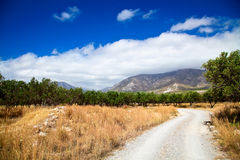 Rural landscape of Greece Stock Image