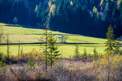 Rural landscape of green farmland and forests Stock Photos
