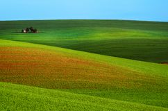 Rural spring landscape. Rural landscape with green field, blue sky and wooden hunting shack , South Moravia, Czech Republic Stock Image