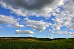 Rural landscape with a green field under a cloudy blue sk. Y Royalty Free Stock Photo
