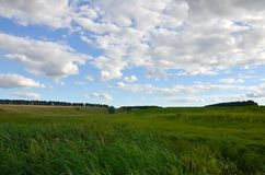 Rural landscape with a green field under a cloudy blue sk. Y Stock Photo