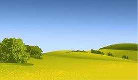 Rural landscape. With green fields Royalty Free Stock Image