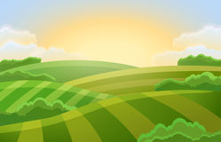 Rural landscape with green fields vector illustration