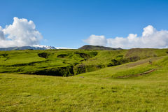 Rural landscape with green meadow and trail on sunny summer day Stock Image