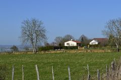 Rural landscape. With green spring field Stock Images
