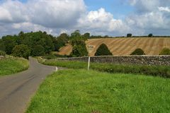 Rural landscape after harvest. Rural road with green grass and field after harvest Stock Photos