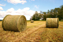 Rural landscape with hay bales Stock Photos