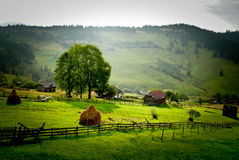 Rural landscape with a haystack. Village with green grass, hills and haystacks Royalty Free Stock Photography