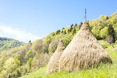 Rural landscape with haystacks in Italian Alps Royalty Free Stock Photo