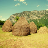 Rural landscape with haystacks Royalty Free Stock Photography