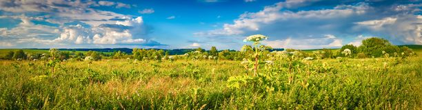 Rural landscape. Heraclium on the foreground. Panorama Stock Images