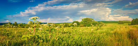 Rural landscape. Heraclium on the foreground. Panorama Stock Photography