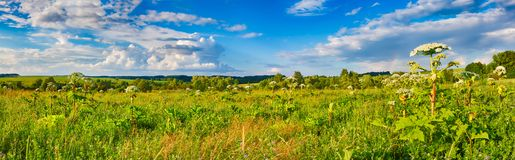 Rural landscape. Heraclium on the foreground. Panorama Royalty Free Stock Image