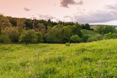 Summer Nature. Landscape meadow at sunset. Rural landscape with a hill. Green meadow under sunset, colorful sky with clouds stock photography