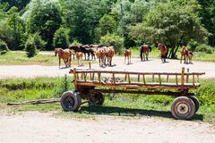 Rural landscape with horses and wooden cart Stock Photo