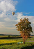 Rural landscape and hotair balloon Royalty Free Stock Images
