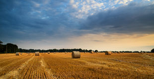 Rural landscape image of Summer sunset over field of hay bales Stock Photos