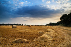 Rural landscape image of Summer sunset over field of hay bales Stock Photography
