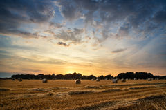 Rural landscape image of Summer sunset over field of hay bales Royalty Free Stock Photos