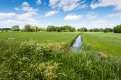 Rural landscape intersected by a reflecting ditch Royalty Free Stock Photos