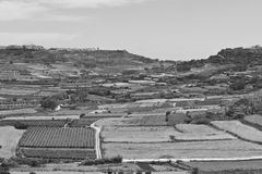 Rural landscape on island Gozo. Rural landscape with  fields and vineyards on maltese island Gozo. Black and white picture Stock Image